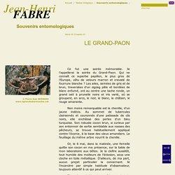 Le Grand-Paon, de Jean-Henri FABRE, Souvenirs entomologiques, 1900, Série VII, Cha. 23