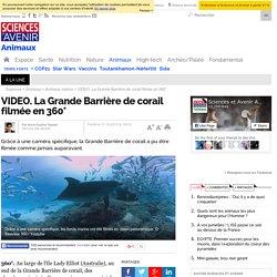 La Grande Barrière de corail filmée en 360°