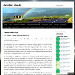 Liberation Irlande