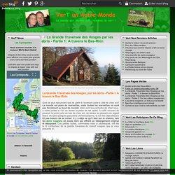 La Grande Traversée des Vosges par les abris - Partie 1: A travers le Bas-Rhin - VerT un Autre Monde