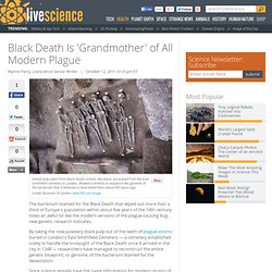 Black Death Is 'Grandmother' of All Modern Plague