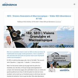 SEO : Visions Granulaire et Macroscopique - Vidéo SEO Abondance N°182