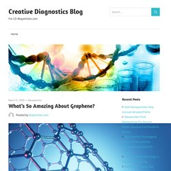 What's So Amazing About Graphene? – Creative Diagnostics Blog