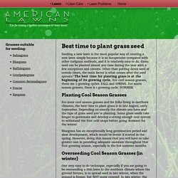 Grass Seed Planting