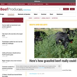 Here's how grassfed beef really could be superior