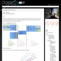 Grasshopper: from traces to grid « Ras Al-Khaimah