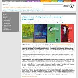 Literatura afro e indígena para leer y descargar gratuitamente
