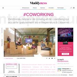 #Coworking : Destinesia, l'espace de coliving et de coworking qui accueille gratuitement les entrepreneurs à Lisbonne - Maddyness
