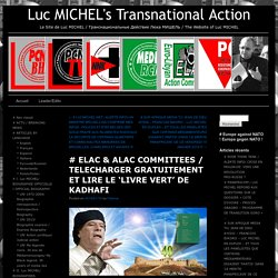 Luc MICHEL's Transnational Action