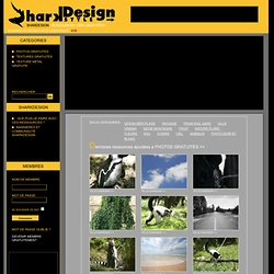 PHOTOS-GRATUITES Sharkdesign : Photo gratuite libre de droit