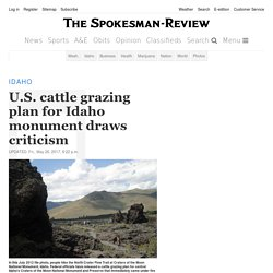U.S. cattle grazing plan for Idaho monument draws criticism