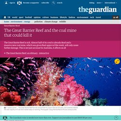 The Great Barrier Reef and the coal mine that could kill it