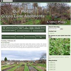 Allotment Blog - Green Lane