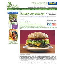 Green America, Fall 2014: Too Much Bad Beef