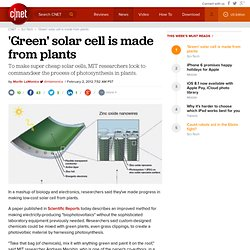 'Green' solar cell is made from plants