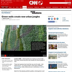 Green walls create new urban jungles