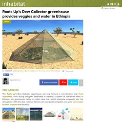Roots Up's Dew Collector greenhouse provides veggies and water in Ethiopia