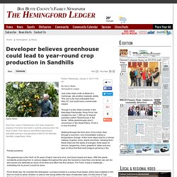 Developer believes greenhouse could lead to year-round crop production in Sandhills - starherald.com: News