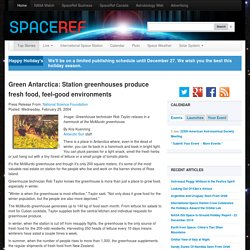 Green Antarctica: Station greenhouses produce fresh food, feel-good environments
