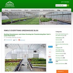 Greenhouses Are Providing Opportunities For Urban Farming