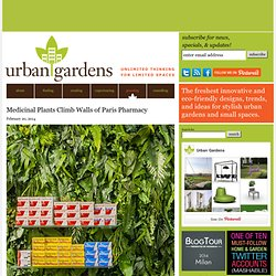 Greening | Urban Gardens | Unlimited Thinking For Limited Spaces