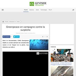 Video - Greenpeace en campagne contre la surpêche