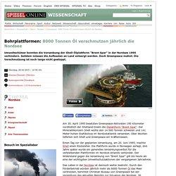 Greenpeace: 8000 Tonnen Öl verschmutzen jährlich die Nordsee