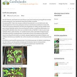 Greffe des aubergines - Un coin de Jardin