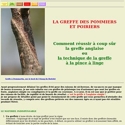 www.greffer.com - Technique de greffes