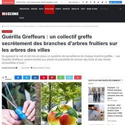 Guérilla Greffeurs : un collectif greffe secrètement des branches d'arbres fruitiers sur les arbres des villes - NeozOne