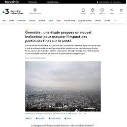 Grenoble : une étude propose un nouvel indicateur pour mesurer l'impact des particules fines sur la santé