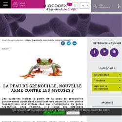La peau de grenouille, nouvelle arme contre les mycoses ?