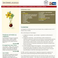 Le grignotage - Yves Cassard - Naturopathe à Sète