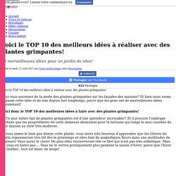 Voici le TOP 10 des meilleurs idées à réaliser avec des plantes grimpantes! - Décorations