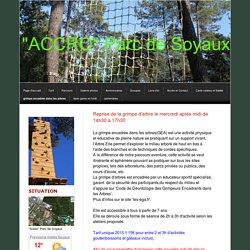 """grimpe encadrée dans les arbres - """"accro""""parc-de-soyaux"""