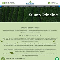 New Image Landscaping & Tree Service