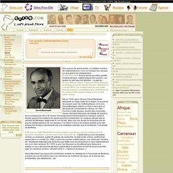 : Les grands mathematiciens noirs