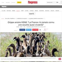 """Grippe aviaire H5N8: """"La France n'a jamais connu une souche aussi virulente"""""""
