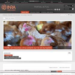 INRA 28/11/14 H5N8, un nouveau virus aviaire sur le sol européen