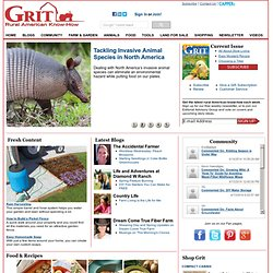 GRIT Magazine -- Rural America, Vegetable Gardening, Great Recipes, Livestock, Farm Machinery, Do It Yourself