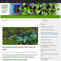 Grönsakslandets skötsel från höst till höst - Gröna rader