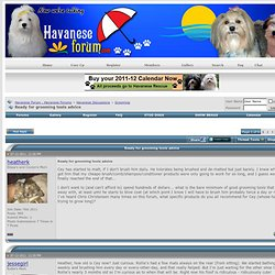 Ready for grooming tools advice - Havanese Forum : Havanese Forums
