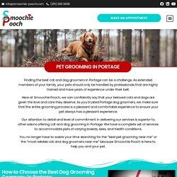 Pet Grooming in Portage - Smoochie Pooch