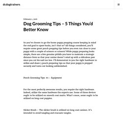 Dog Grooming Tips – 5 Things You'd Better Know – dcdogtrainers