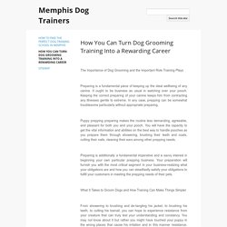 How You Can Turn Dog Grooming Training Into a Rewarding Career