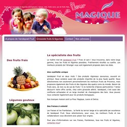 Vandepoel Fruit - Brussel - Grossiste fruits & légumes