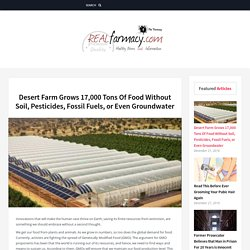 Desert Farm Grows 17,000 Tons Of Food Without Soil, Pesticides, Fossil Fuels, or Even Groundwater – REALfarmacy.com
