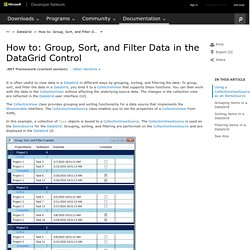 How to: Group, Sort, and Filter Data in the DataGrid Control