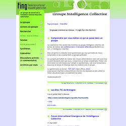 Le groupe Intelligence Collective de la Fing