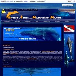 G.E.M.M. - Groupe d'Étude des Mammifères Marins de Polynésie - Marine Mammal Study Group